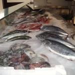 11_pesce_fresco_pescheria