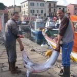 1_pesca_isola_d'elba (27)