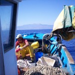 1_pesca_isola_d'elba (43)