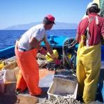 1_pesca_isola_d'elba (44)