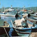 1_pesca_isola_d'elba (50)