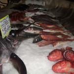 9_pesce_fresco_pescheria